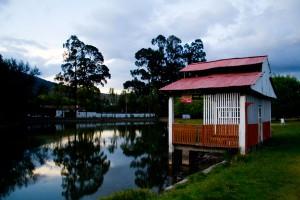 Ecuadorian Pond